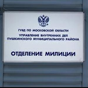 Отделения полиции Брежнева